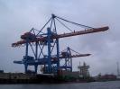 2007 Studienreise Hamburg_1